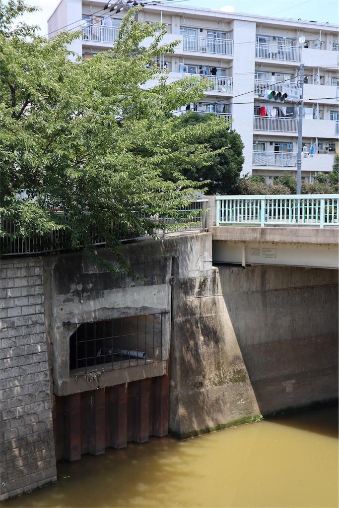 f:id:chizuchizuko:20180911203050j:image