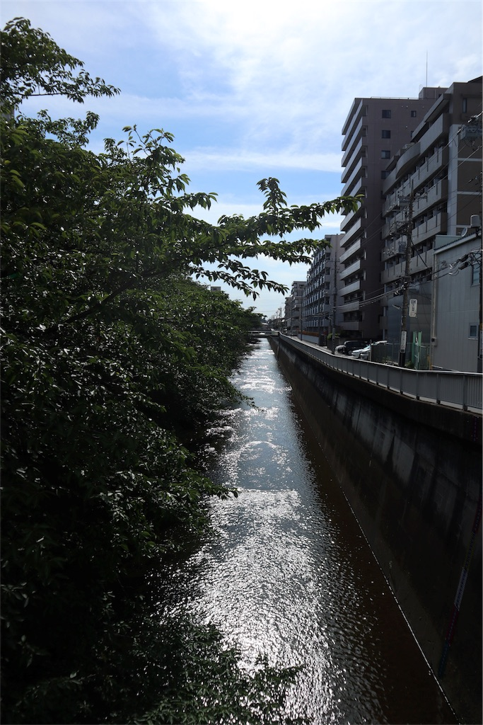 f:id:chizuchizuko:20180911203545j:image