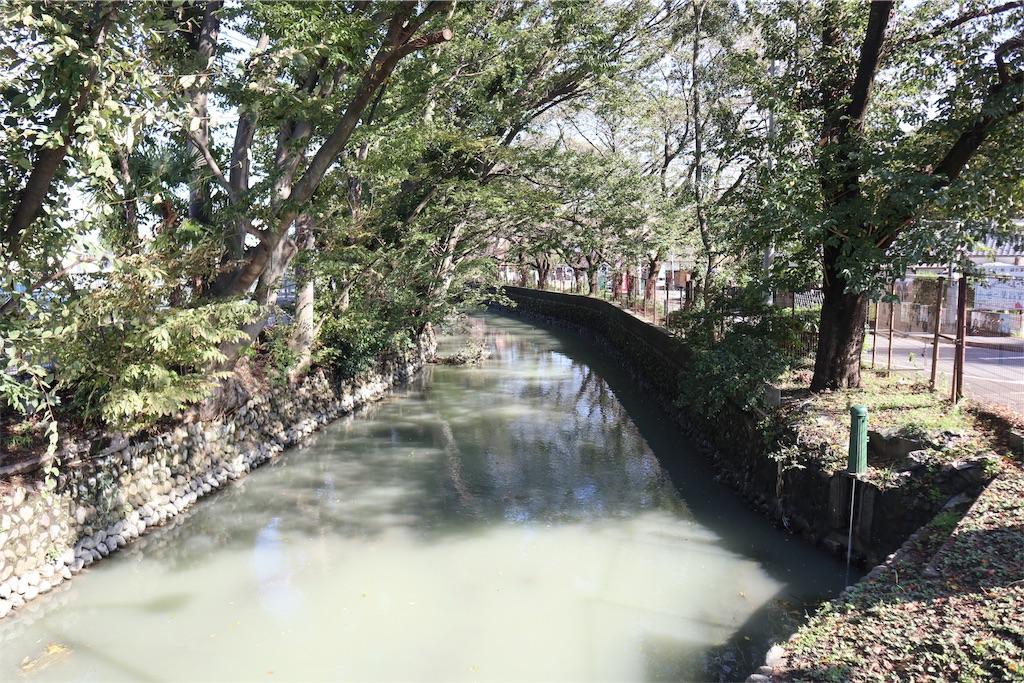 f:id:chizuchizuko:20181101224455j:image