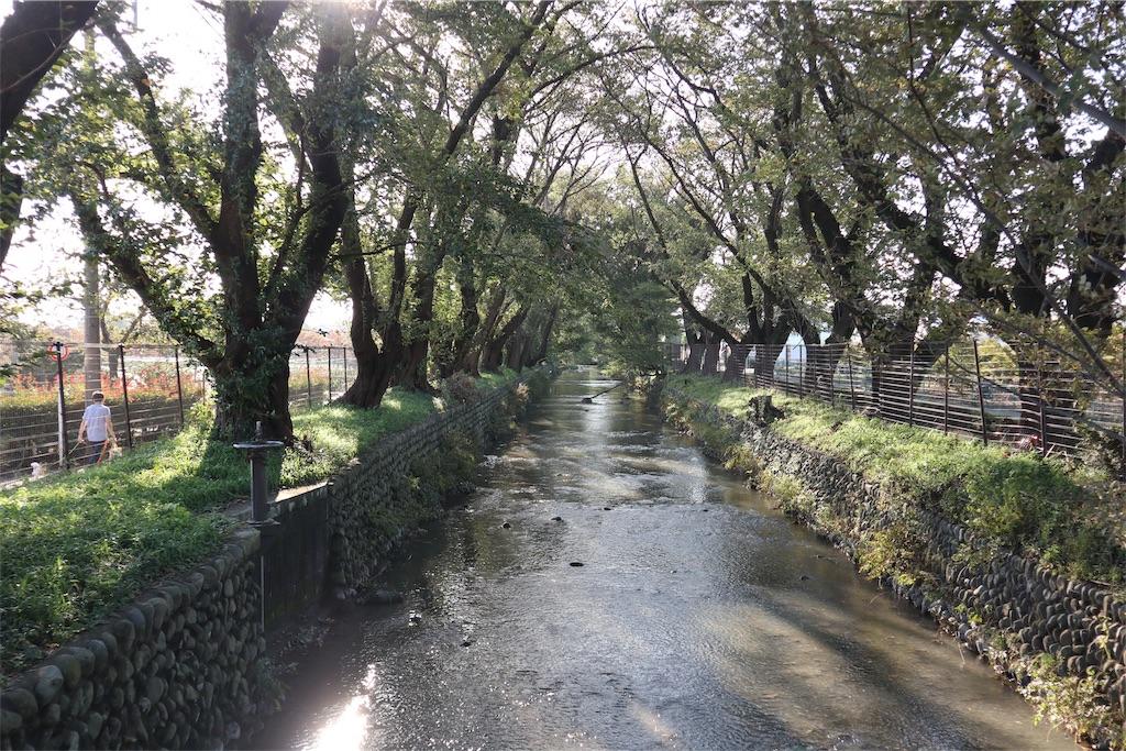 f:id:chizuchizuko:20181101225221j:image