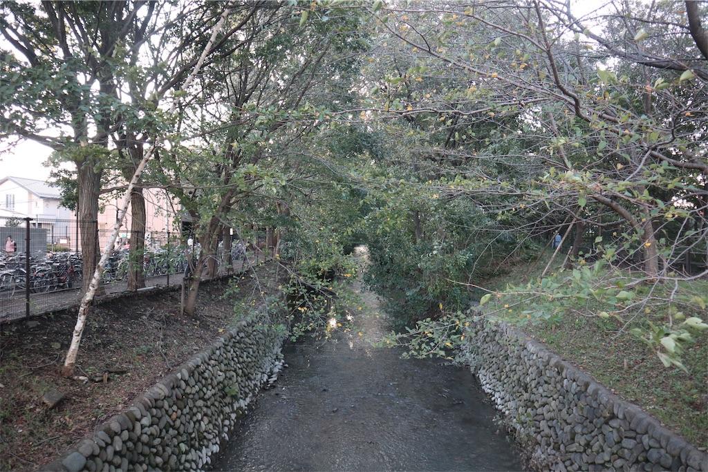 f:id:chizuchizuko:20181101225243j:image