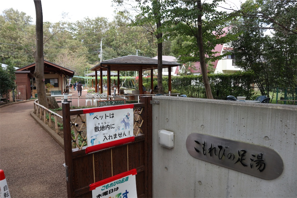 f:id:chizuchizuko:20181101230342j:image