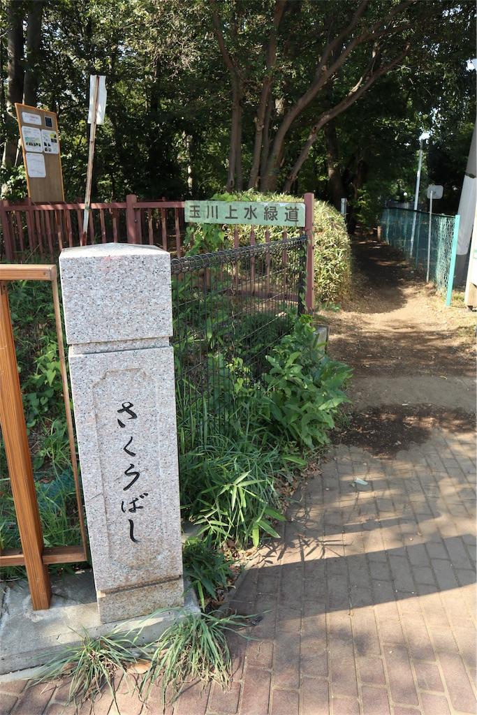 f:id:chizuchizuko:20181101231507j:image