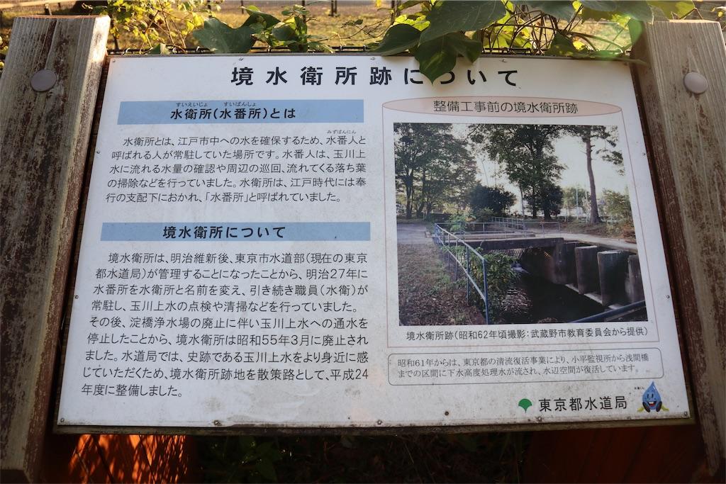 f:id:chizuchizuko:20181101232617j:image