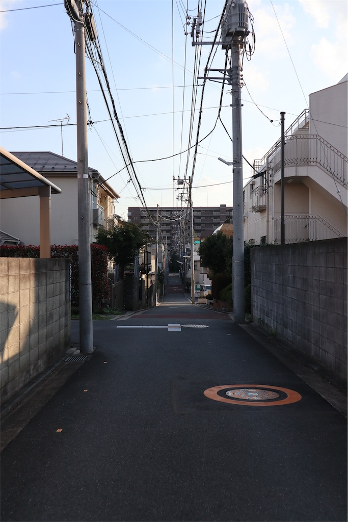 f:id:chizuchizuko:20181101232636j:image