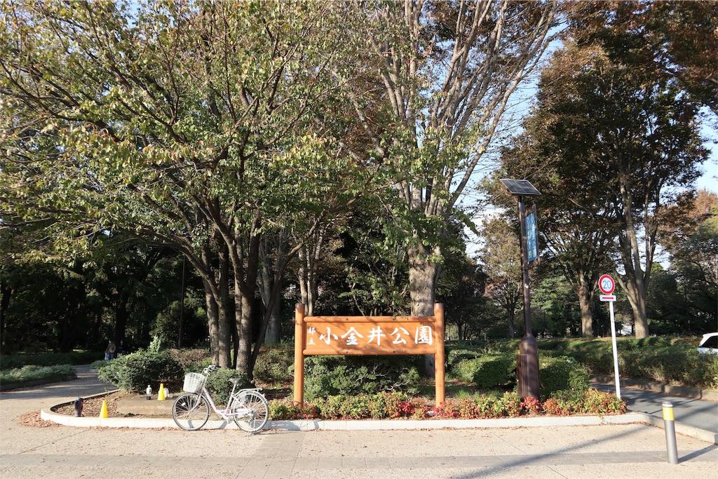 f:id:chizuchizuko:20181101232643j:image