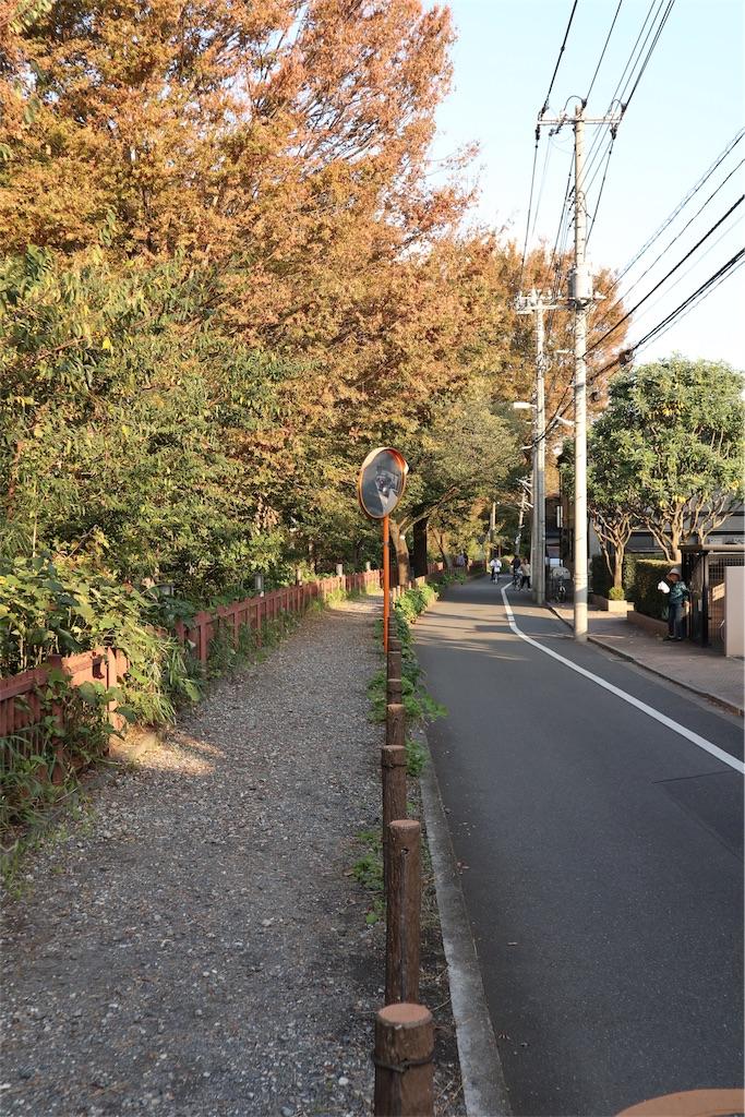 f:id:chizuchizuko:20181101232658j:image