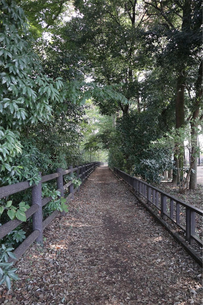 f:id:chizuchizuko:20181118113111j:image