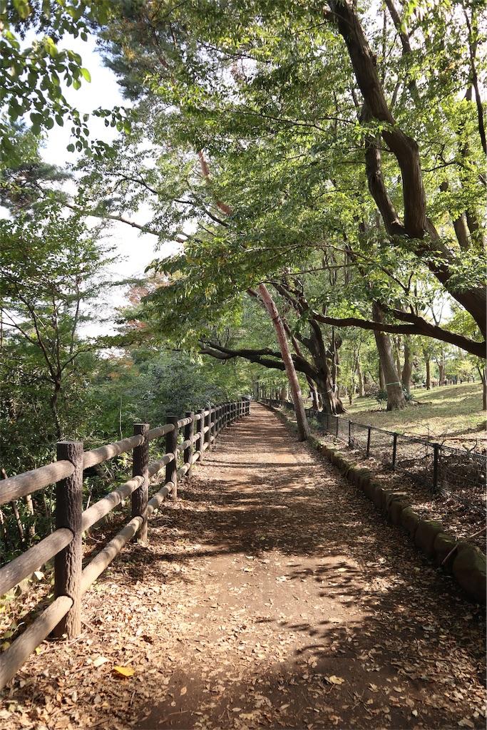 f:id:chizuchizuko:20181118113153j:image