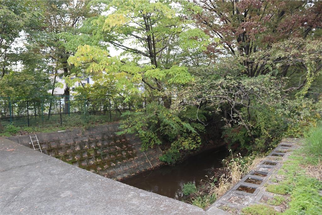 f:id:chizuchizuko:20181118113520j:image