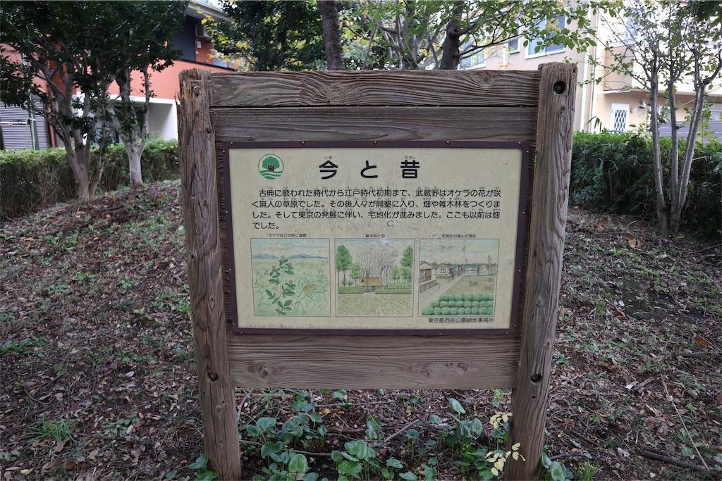 f:id:chizuchizuko:20181118113700j:image