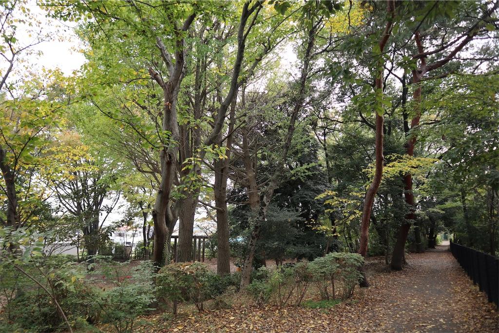 f:id:chizuchizuko:20181118113910j:image