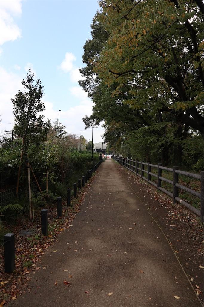 f:id:chizuchizuko:20181118114048j:image