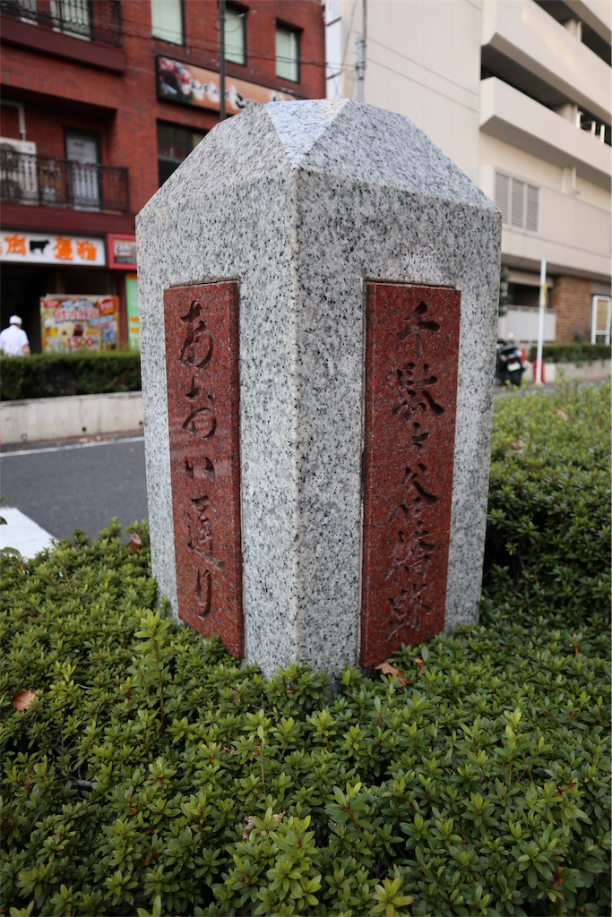f:id:chizuchizuko:20181118123554j:image