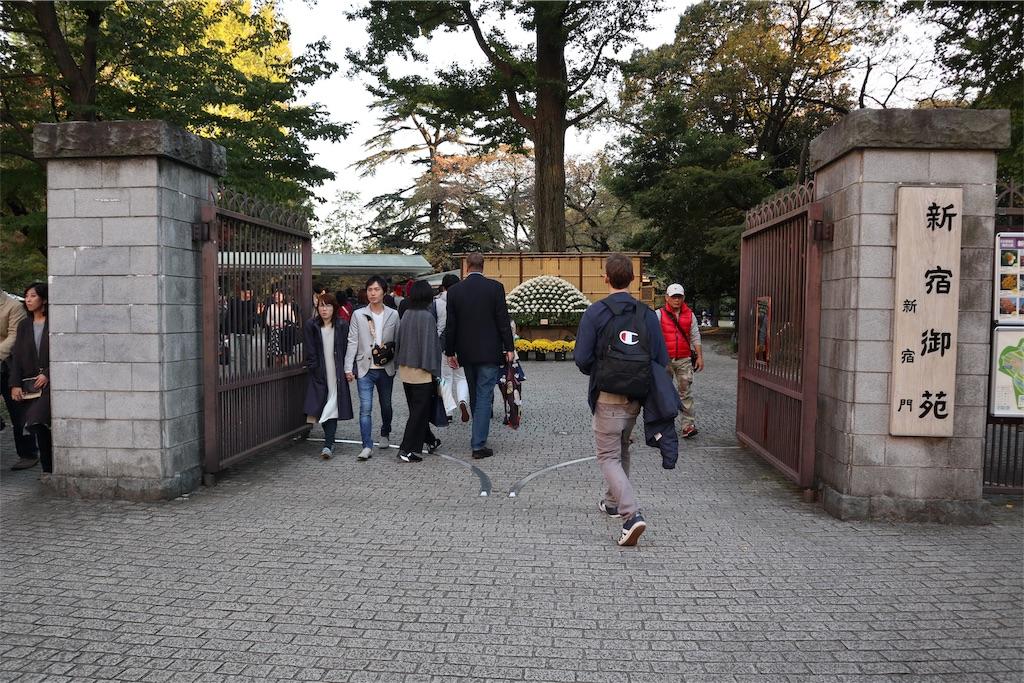 f:id:chizuchizuko:20181118165741j:image