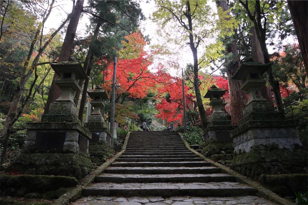 f:id:chizuchizuko:20181202120030j:image