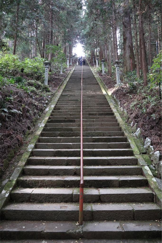f:id:chizuchizuko:20181202120139j:image