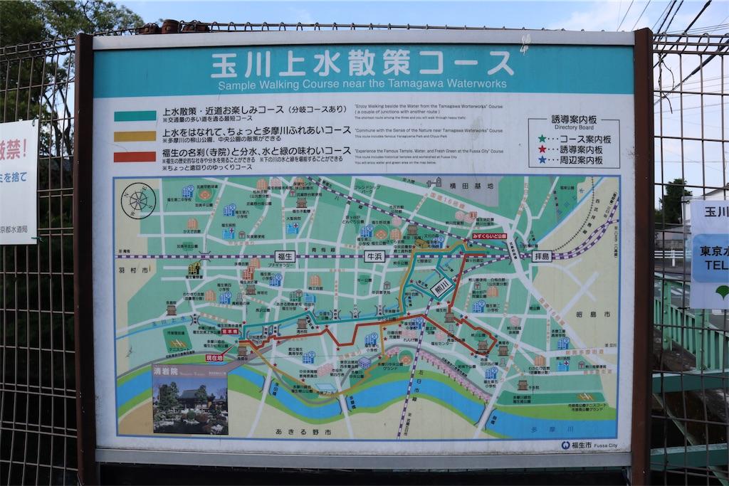 f:id:chizuchizuko:20190108193956j:image