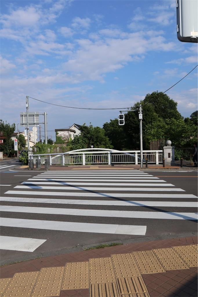 f:id:chizuchizuko:20190108194052j:image
