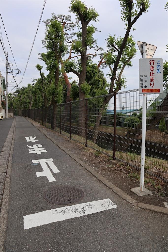 f:id:chizuchizuko:20190108194417j:image