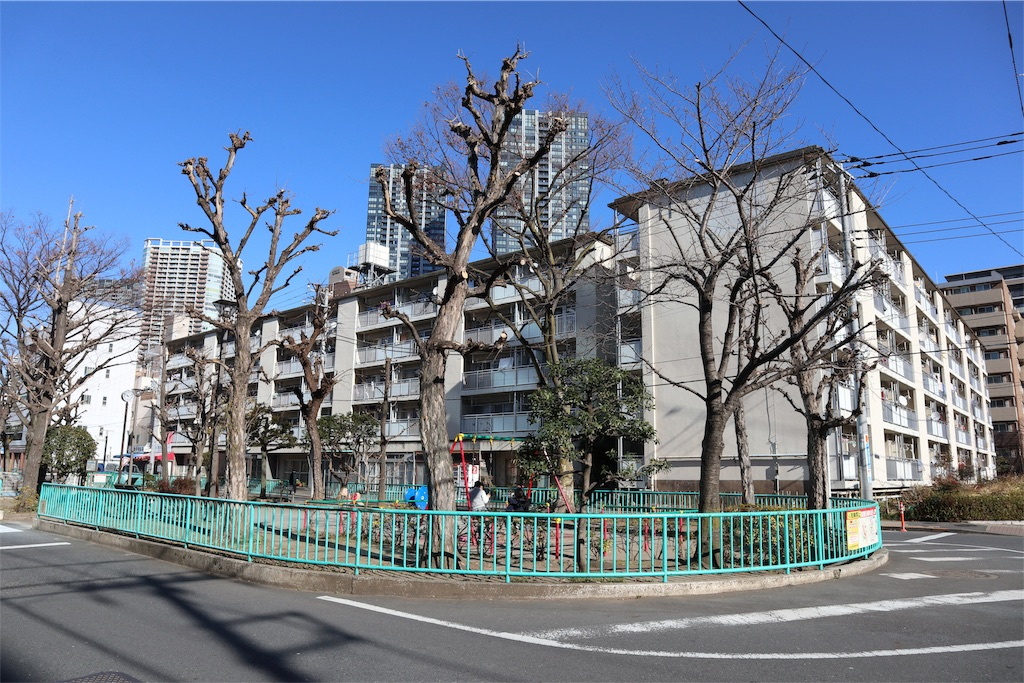 f:id:chizuchizuko:20190120103006j:image