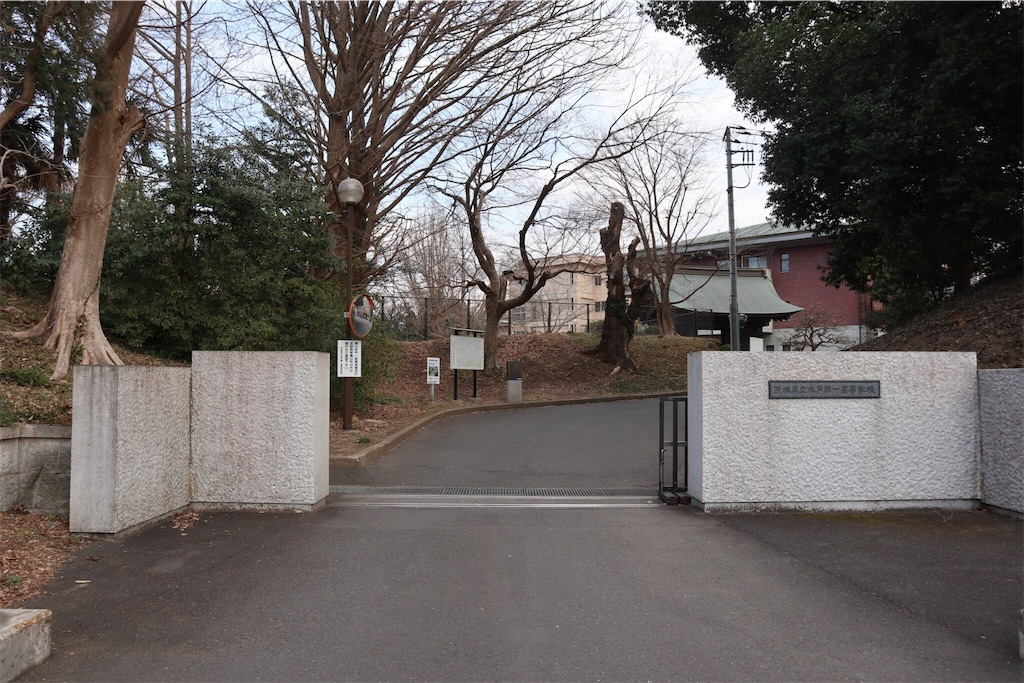 f:id:chizuchizuko:20190223221606j:image