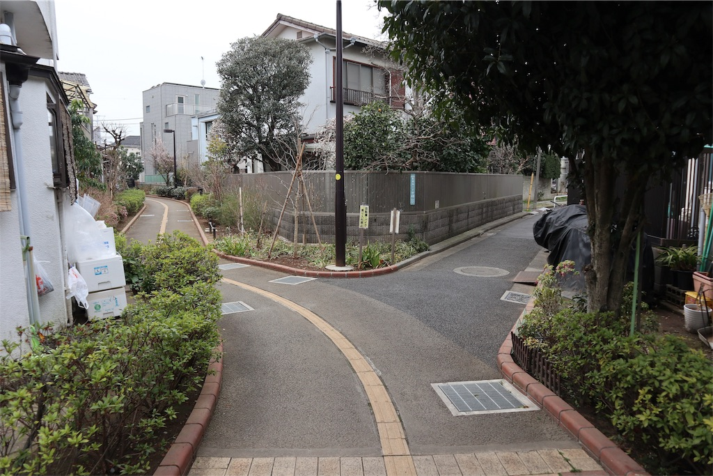f:id:chizuchizuko:20190312004428j:image