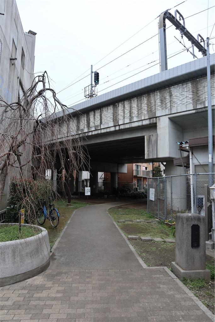 f:id:chizuchizuko:20190312004438j:image
