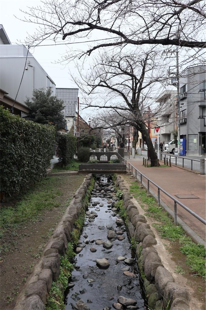 f:id:chizuchizuko:20190312004448j:image