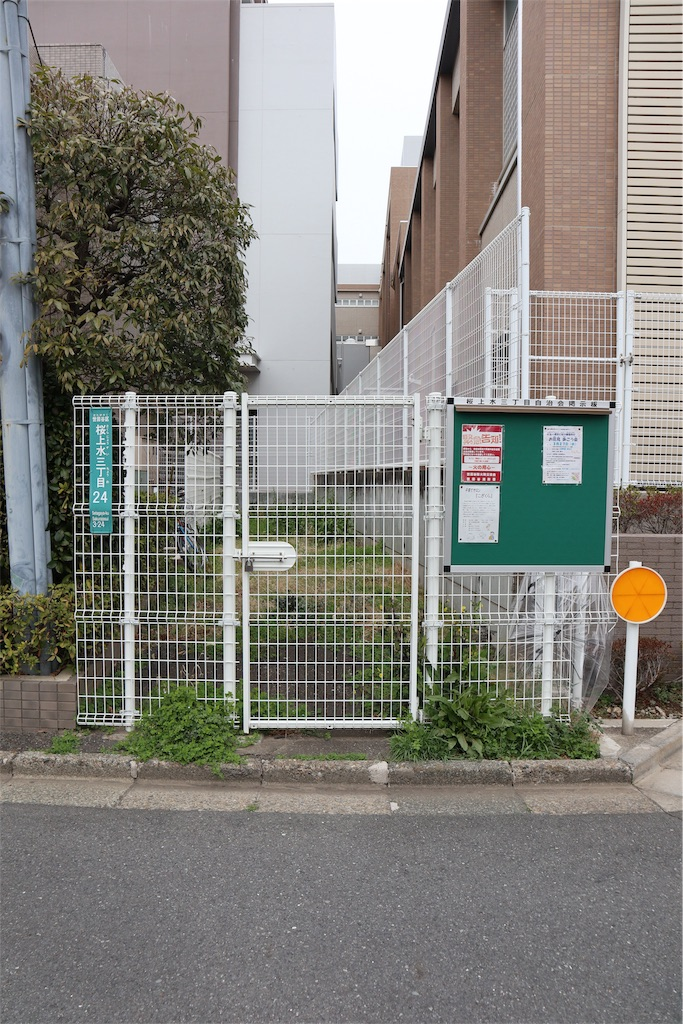 f:id:chizuchizuko:20190312004757j:image