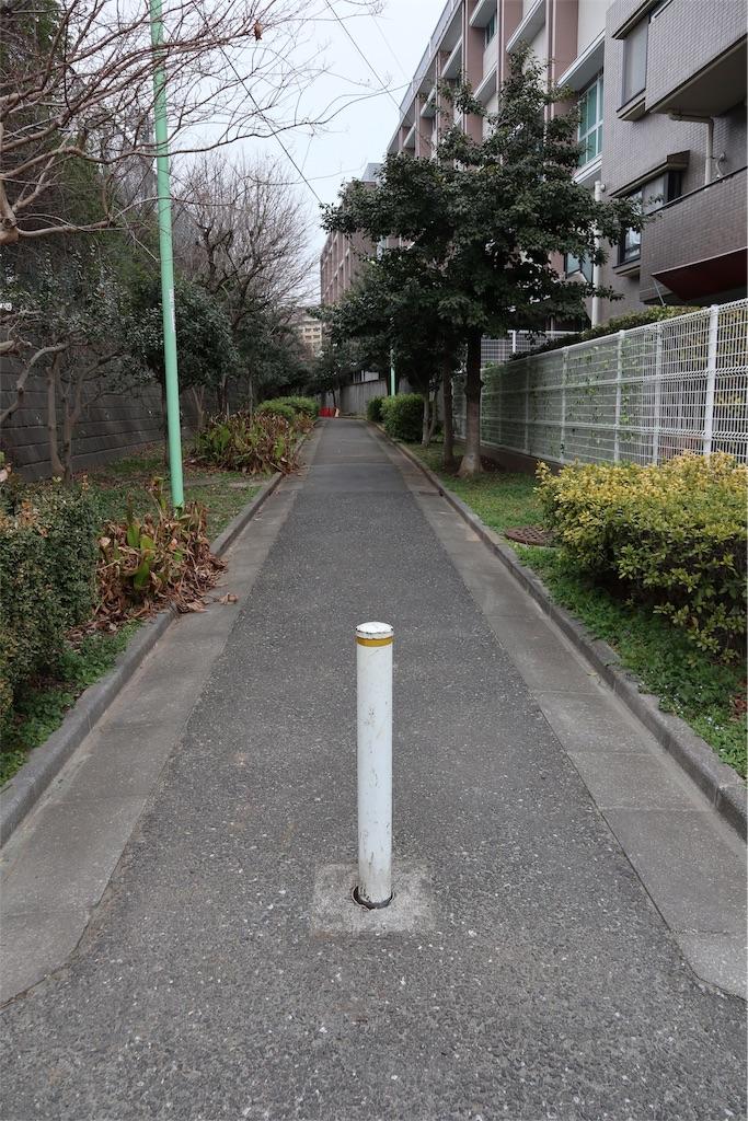 f:id:chizuchizuko:20190312004818j:image