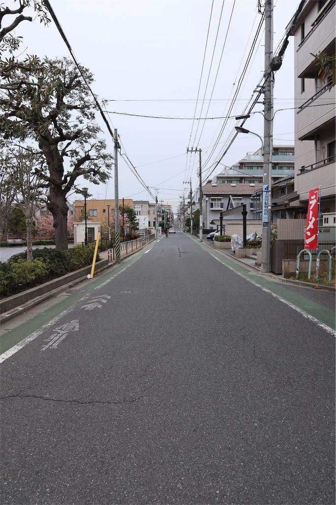 f:id:chizuchizuko:20190312004828j:image