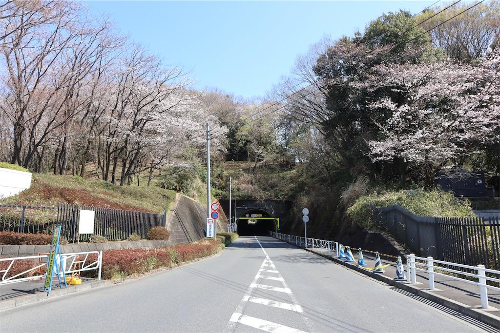 f:id:chizuchizuko:20190404212251j:image