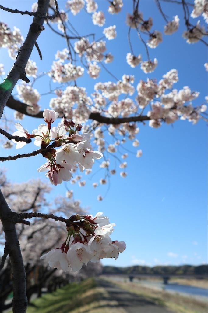 f:id:chizuchizuko:20190427102300j:image