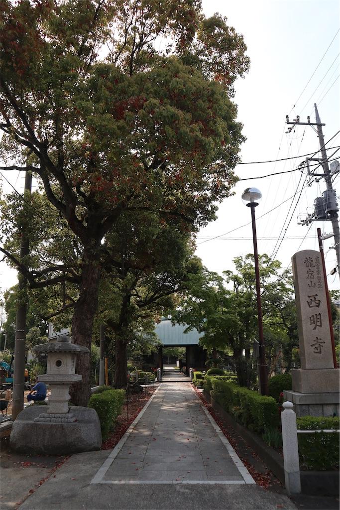 f:id:chizuchizuko:20190427104003j:image