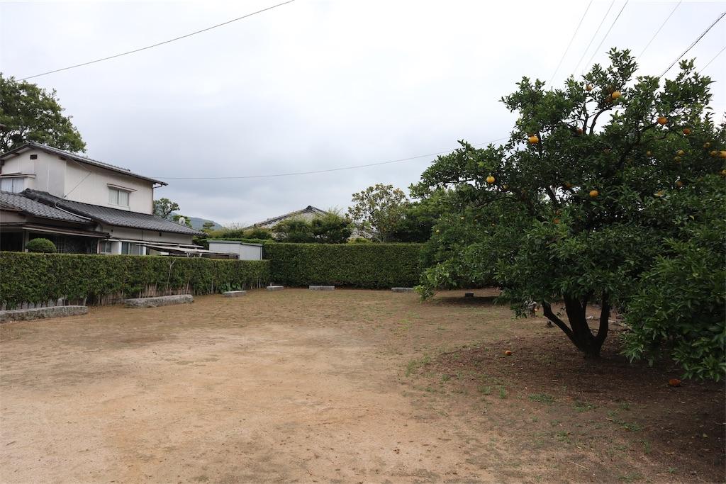 f:id:chizuchizuko:20190611002153j:image