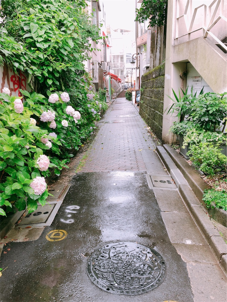 f:id:chizuchizuko:20190622102046j:plain