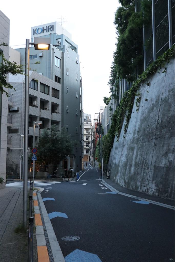 f:id:chizuchizuko:20190623133717j:image