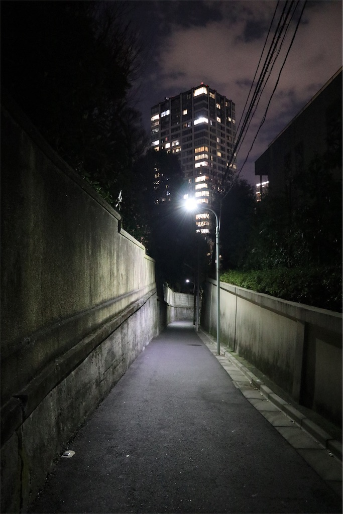 f:id:chizuchizuko:20190623134625j:plain