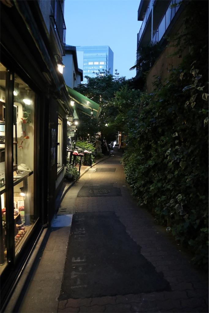 f:id:chizuchizuko:20190630142930j:image