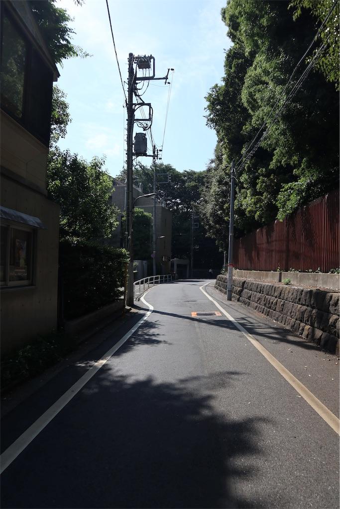 f:id:chizuchizuko:20190711212449j:image