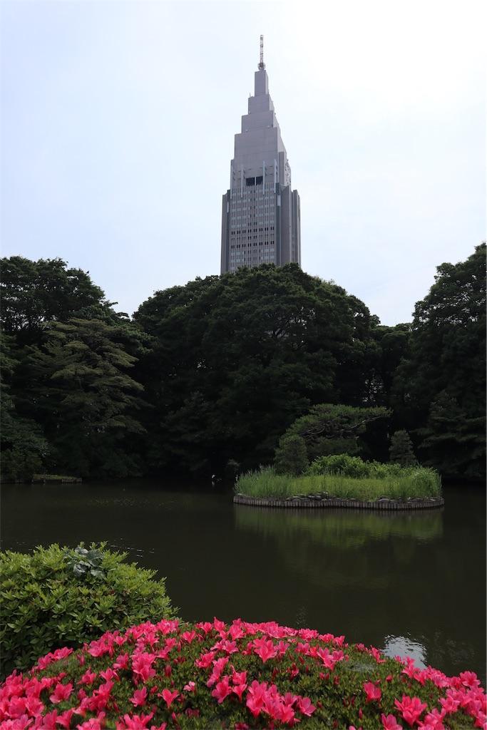 f:id:chizuchizuko:20190711212528j:plain