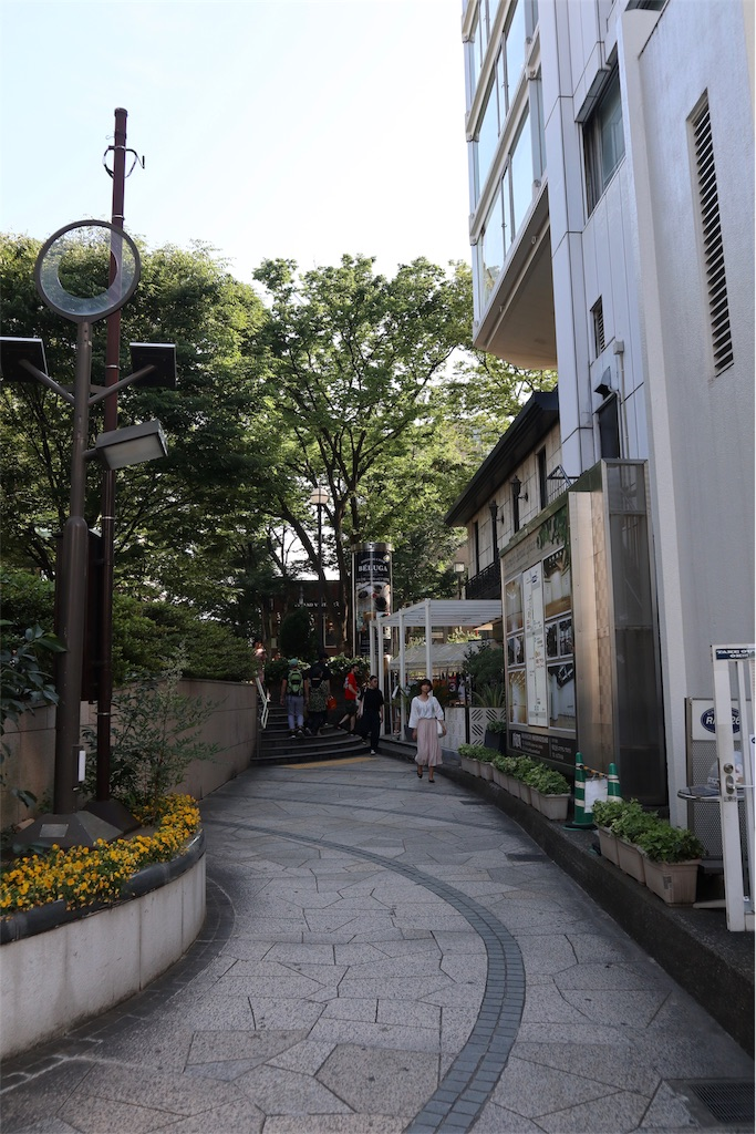 f:id:chizuchizuko:20190713111120j:image