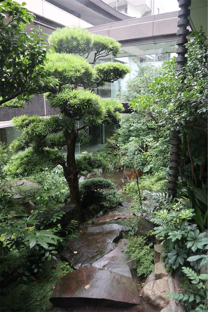 f:id:chizuchizuko:20190714134359j:image