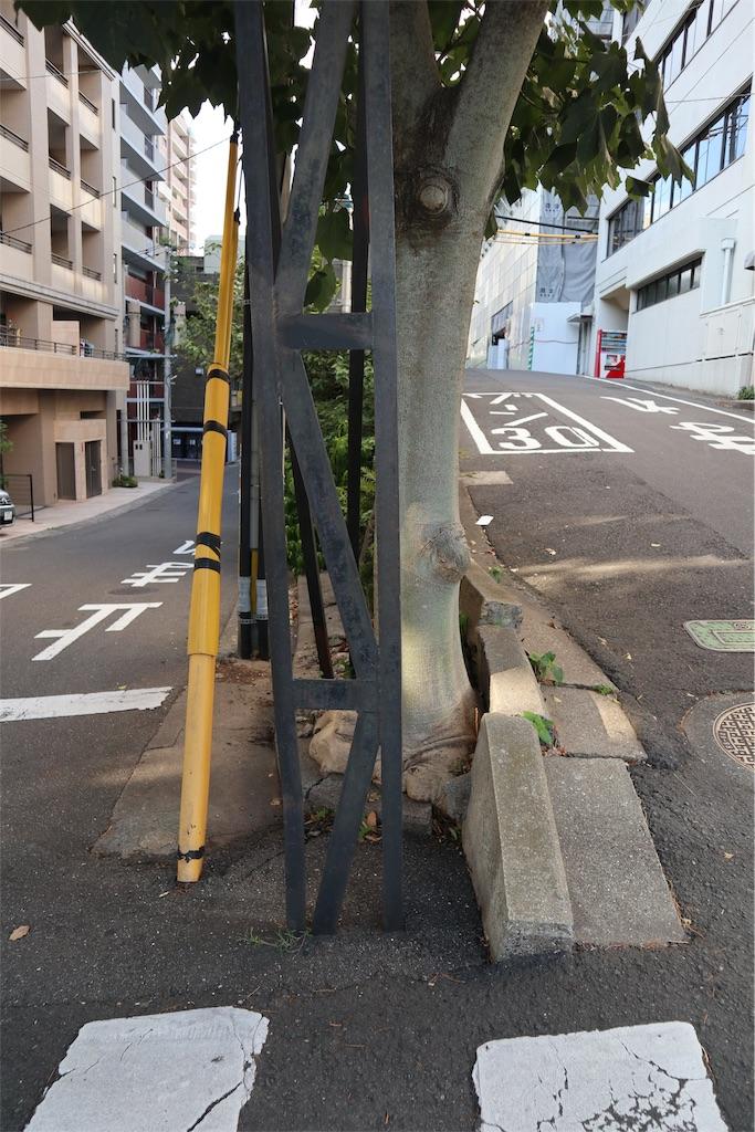 f:id:chizuchizuko:20190815191946j:image