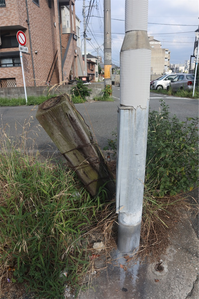 f:id:chizuchizuko:20190831110322j:image