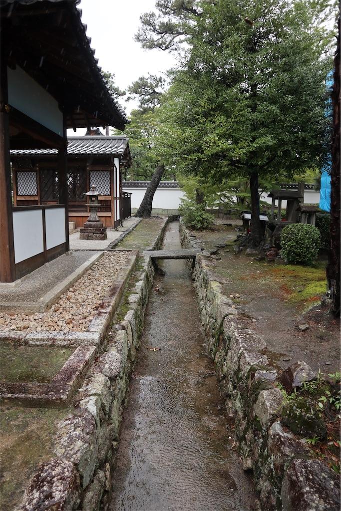 f:id:chizuchizuko:20191012151435j:image