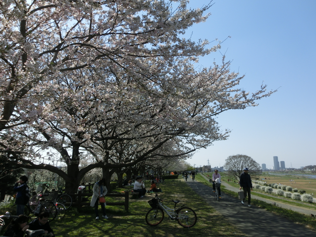 f:id:chizuchizuko:20191019101330j:plain
