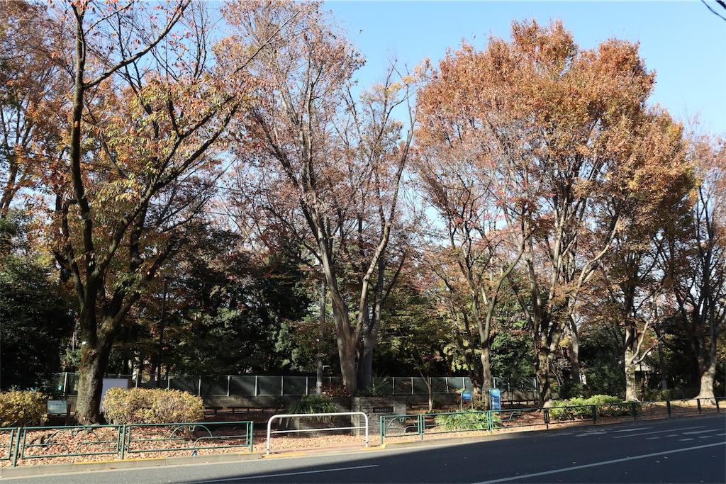 f:id:chizuchizuko:20191201180618j:image