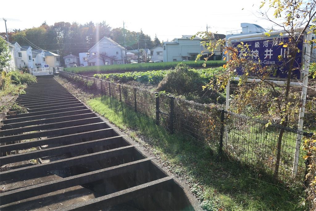 f:id:chizuchizuko:20191201180706j:image